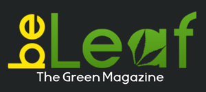 BeLeaf - The green Magazine